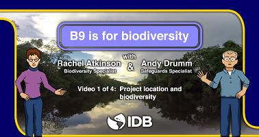 Como identificamos e mitigamos os riscos à biodiversidade