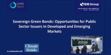 Bonos verdes soberanos: oportunidades para emisores del sector público en mercados desarrollados y emergentes