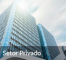 4 - Setor privado