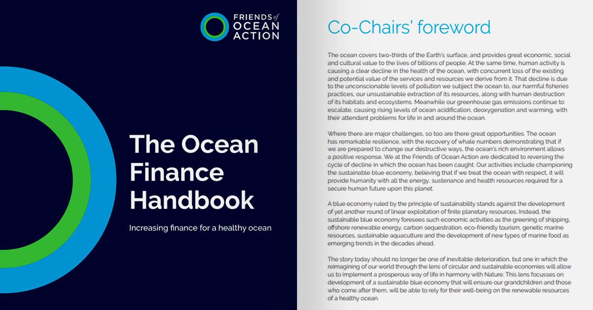 Manual de Finanzas Oceánicas | Incrementar las finanzas para ecosistemas marinos saludables