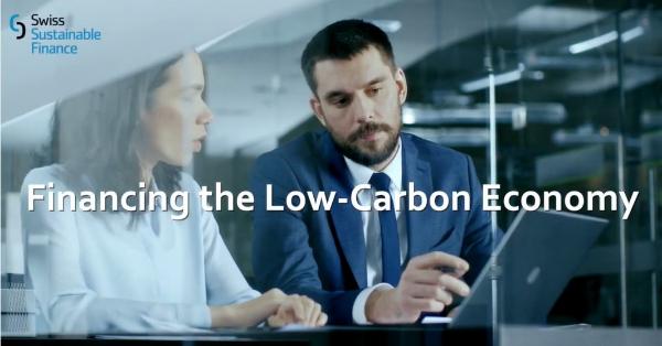 Financiamento da economia de baixo carbono – Seguro de Economia de Energia (Energy Saving Insurance – ESI)