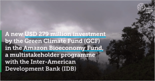GCF and IDB in the Amazon: Empowering bio-businesses to protect the Amazon biome